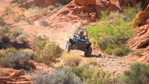 RZR in the Valley of Fire