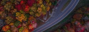aerial view of a road through fall colored trees
