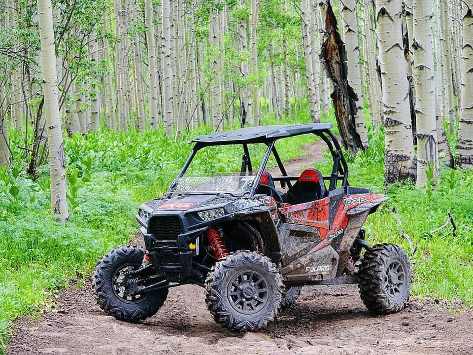 RZR on the trail in Routt National Forest
