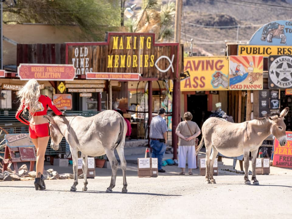 The famous Wild West mining camp in Oatman, AZ
