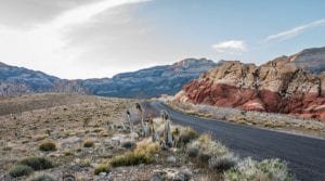 scenic road through red rock mountains