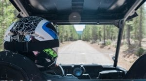backseat view of guest riding a Polaris RZR down a wooded trail