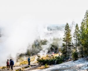 fog covered path in Yellowstone National Park