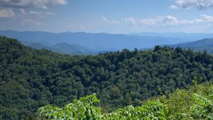 aerial view of tree covered Appalachian Mountains